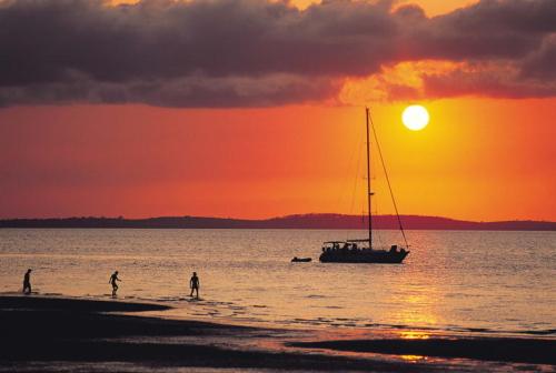 フレーザー島の画像 p1_17