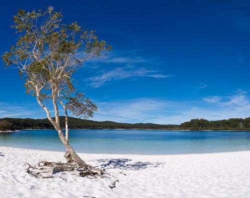 フレーザー島 (世界遺産・世界最大の砂島)