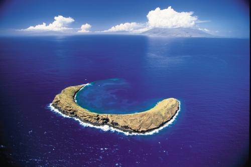 スノーケル&ダイビング(モロキニ島など)