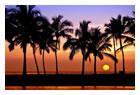 ハワイ島・ハワイ
