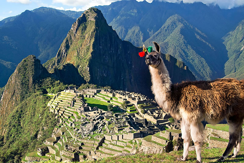 中南米オプショナルツアー