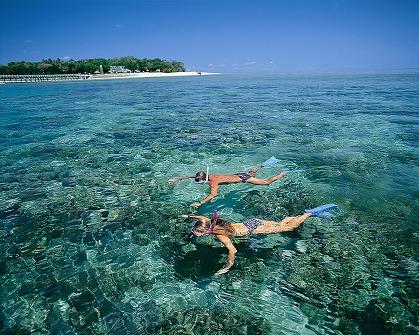 どきどき 2大世界遺産ツアー キュランダ&グリーン島を一日で
