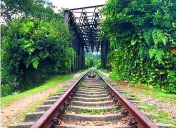 【シンガポール】レトロなSNS映えスポットへ! マレー鉄道跡地観光