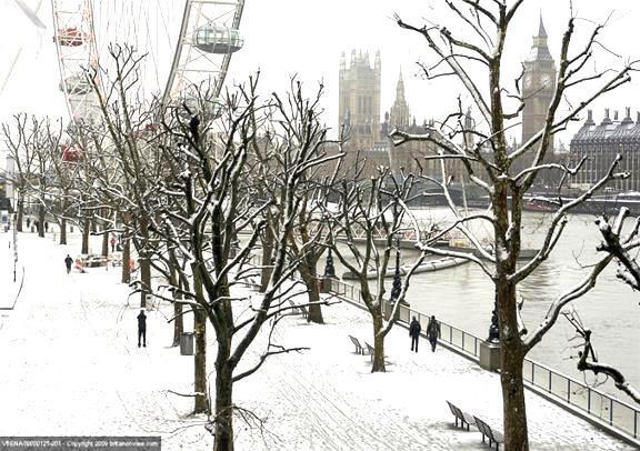 12月25日限定:クリスマスデイ・ランチ・クルーズと市内観光(英語ガイド)
