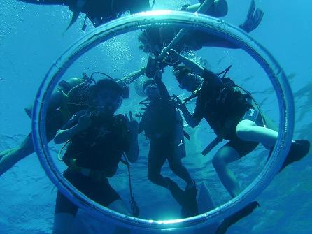 体験ダイビング<ビーチ1ダイブ>イルカウォッチング+ナナボート+スノーケルツアー付き! byサファイア