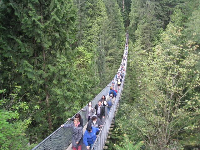 キャピラノ吊橋とグラウスマウンテン散策 (夏季)