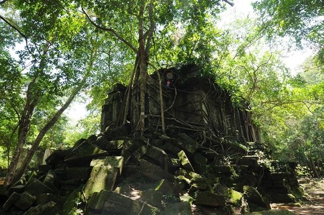 「天空の城ラピュタ!?」ベンメリア寺院半日ツアー