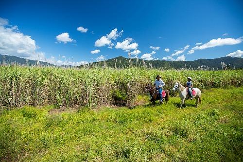 ブレイジングサドルズ 乗馬&ATVバギーコンボツアー 12歳から参加可能!