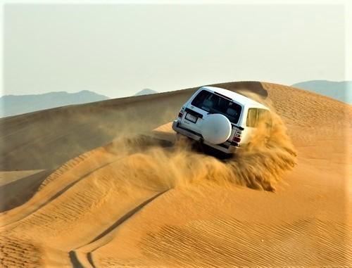 半日砂漠サファリとBBQ