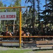 バンフ1時間乗馬体験