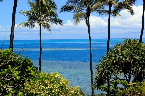 【カネオヘ湾】ハワイ海洋散骨・海洋葬