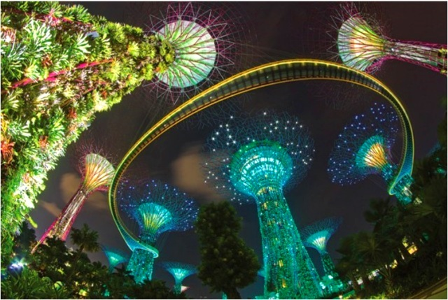 【ジュエルボックス】夜景観賞+リバーボート+光のショー+レッドハウス夕食付