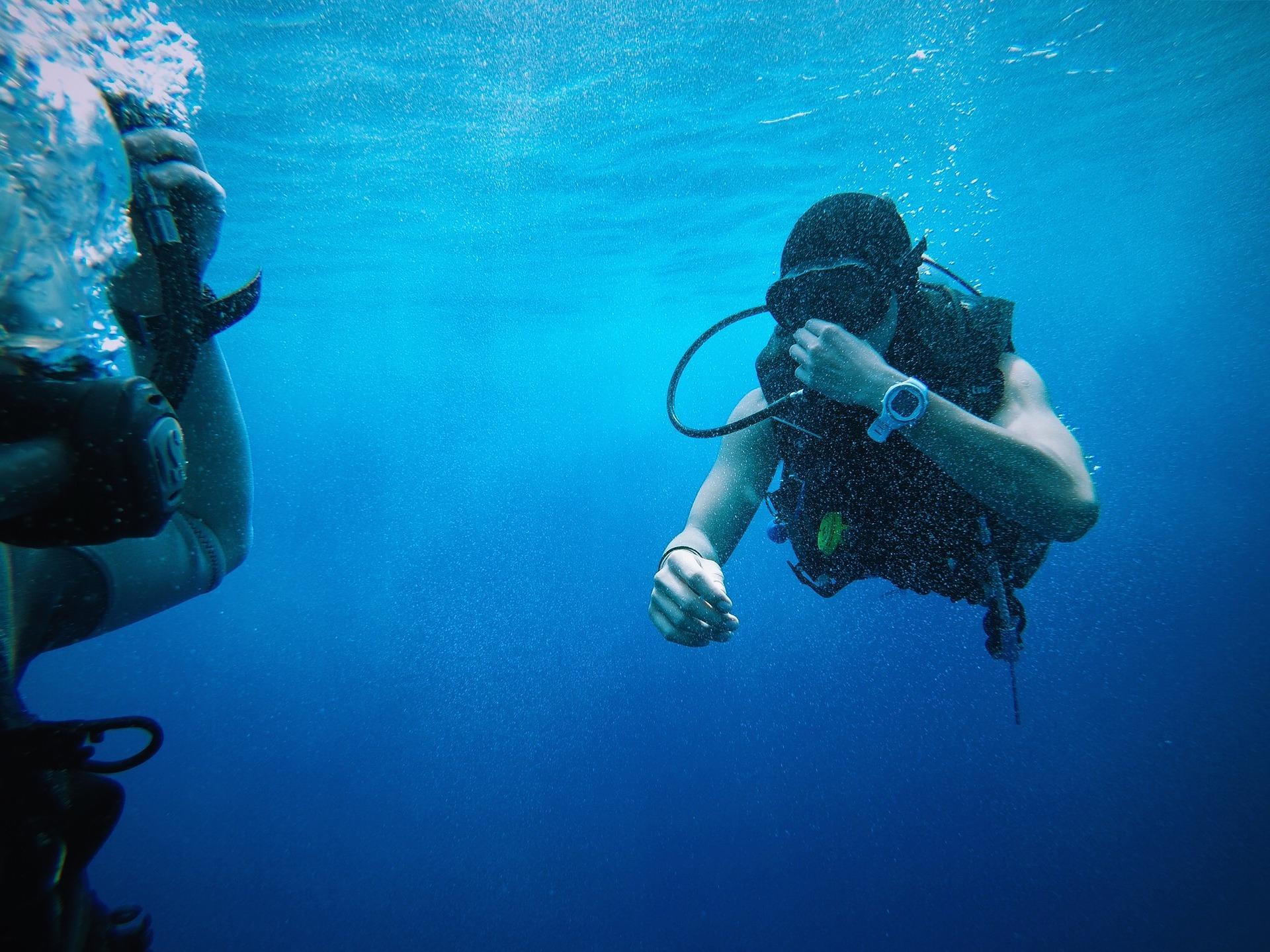一押しダイブスポット、キーラーゴ島沖珊瑚礁で体験ダイビング(初心者向・日本人インストラクター付)