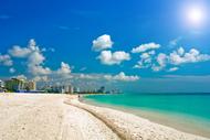 海辺の宮殿ビスカヤ・パレスとマイアミいいとこどり!ハイライト観光