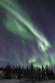 【2016/17 WINTER】 YELLOWKNIFE AURORA TOUR 3NIGHTS 4DAYS by Beck's Kennels (except Dec.24-Jan.02)