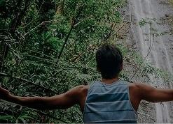 【カイマナファームカフェのランチ付き♪】マノア滝ハイキング・ツアー (ネイチャー&ユー)