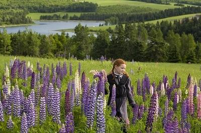 カナダの大自然大満喫!カナディアンロッキーと憧れの赤毛のアンの島❤プリンスエドワード島4泊