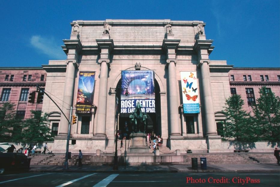 専用車チャーターで行く 朝イチでまわる◎ アメリカ自然史博物館 VIPツアー