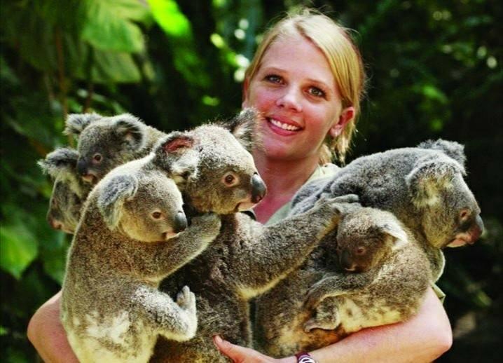 コアラガーデン動物園