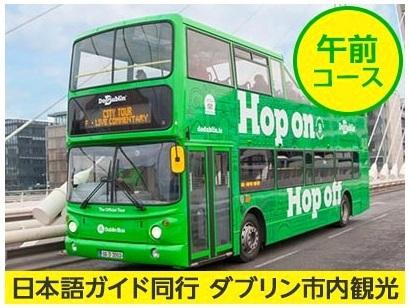 [みゅう]【プライベートツアー】専属ガイドがご案内 乗り降り自由バスで巡るダブリン市内午前観光