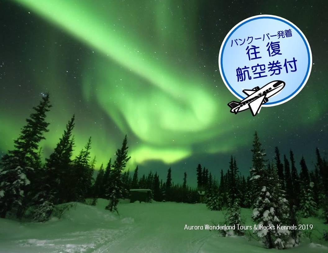 【2020年2月6日(木)出発限定】 航空券付き!イエローナイフオーロラツアー3泊4日