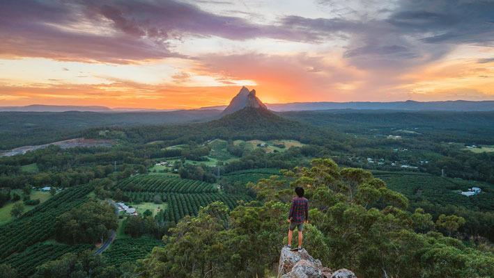 クロコダイルハンターオーストラリアZOOとサンシャインコースト1日観光