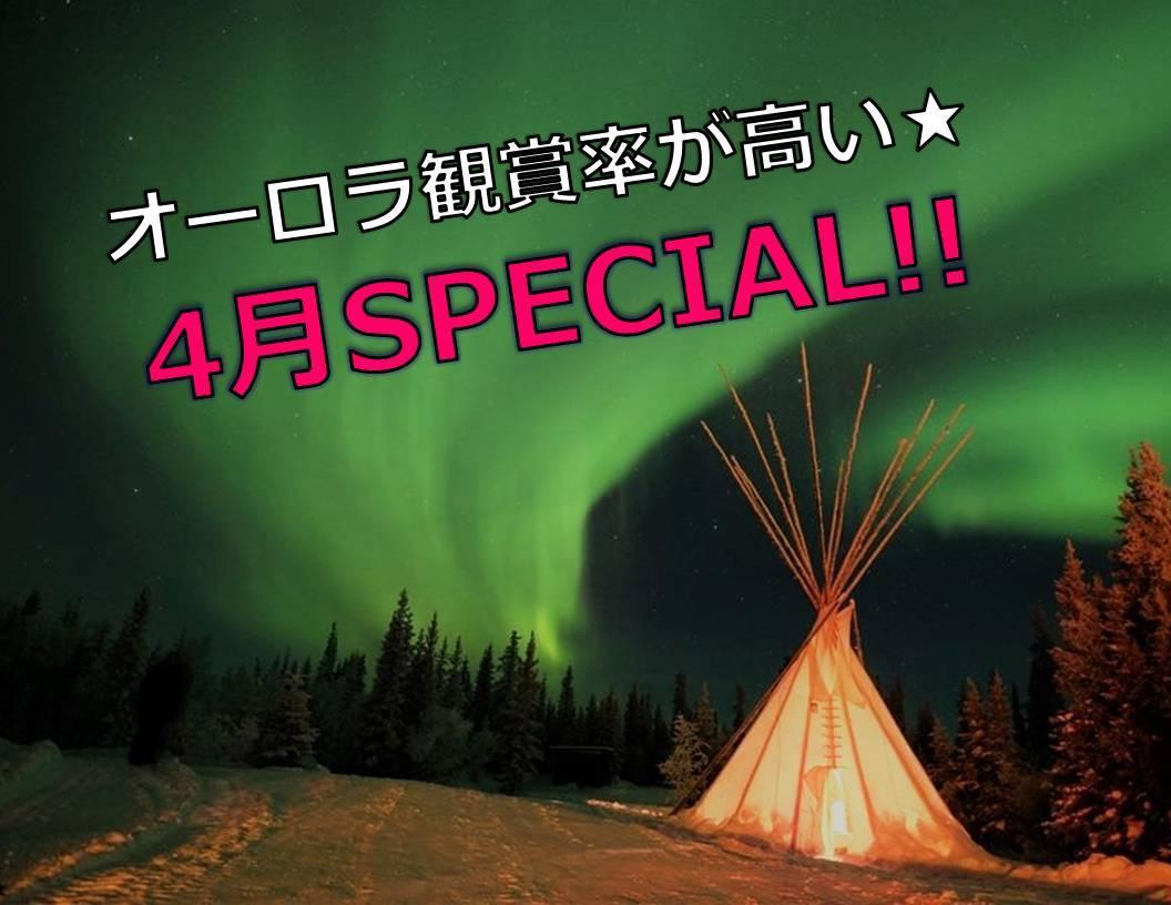 【AURORA観賞率が高い4月SPECIAL!!】 格安イエローナイフオーロラツアー♪