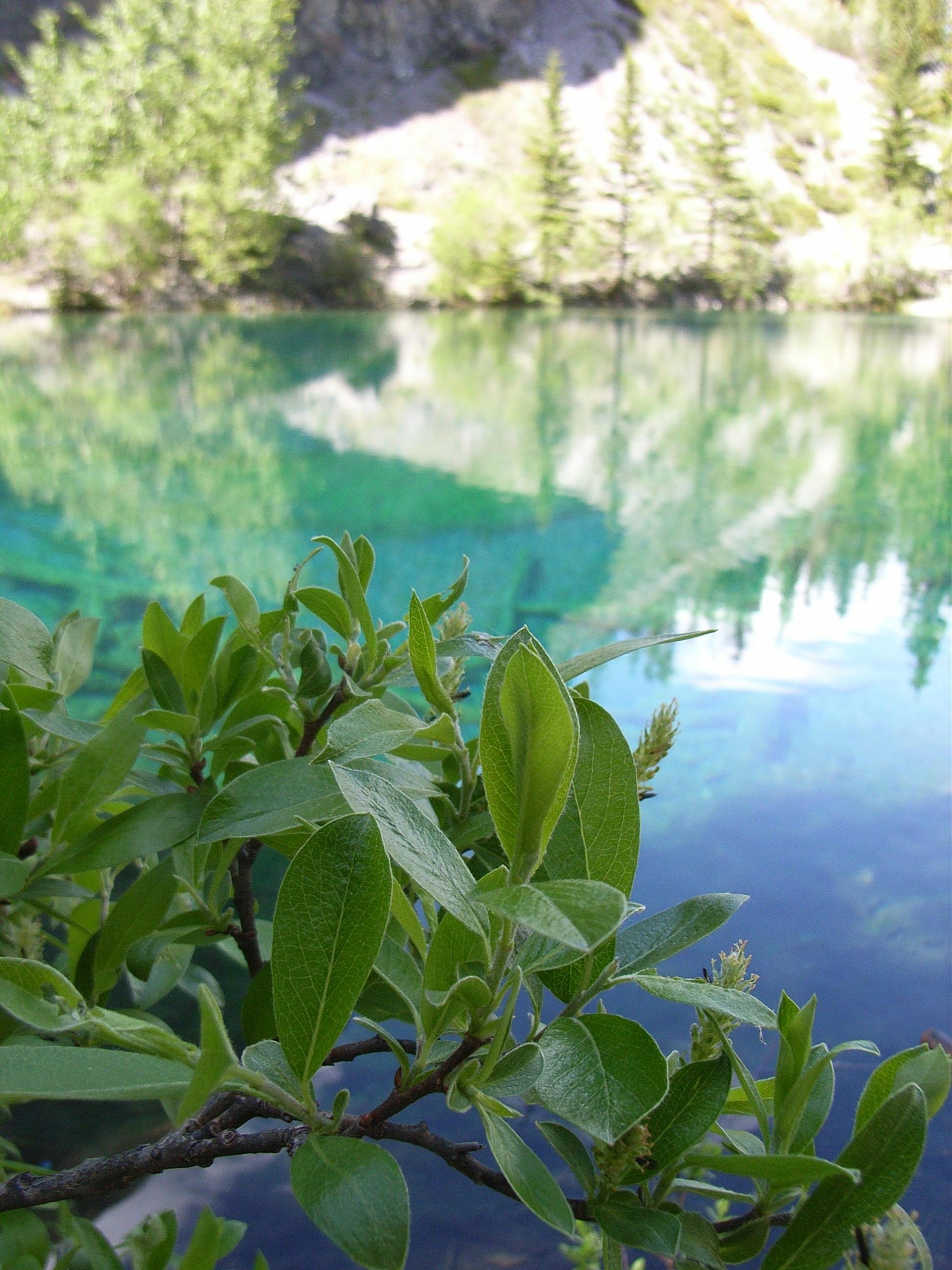グラッシー湖ハイキング