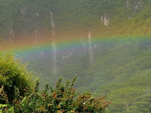 マノア滝ハイキングツアー (アロハアイナエコツアーズ)