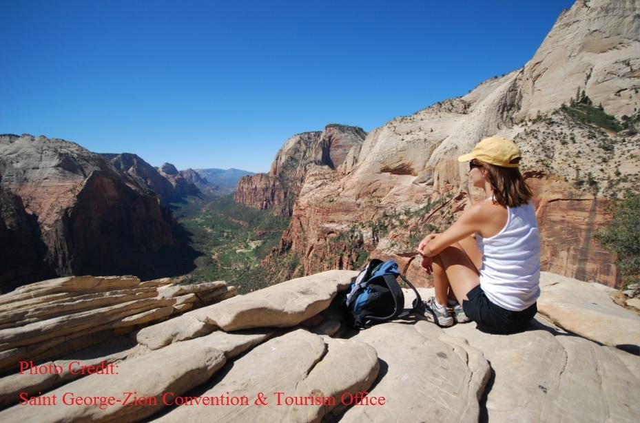 【ネバダ観光サービス】 ザイオン国立公園ハイキングツアー(ゆっくり歩いてみた ザイオン)