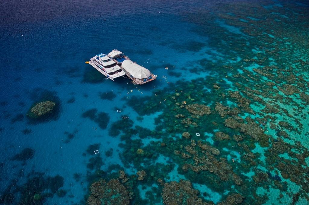 グリーン島とアウターリーフクルーズ