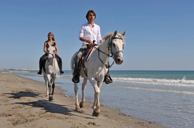 ノースショア観光&乗馬ツアー(海辺・白砂ビーチ・コース45分)
