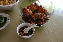 上海蟹 の 産地、陽澄湖 にて 上海蟹 を食べる