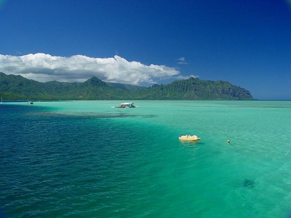 【初心者もOK!】サンドバーで開催♪ 珊瑚礁ボート体験ダイビング (1本・午前/午後)(2本・午前)(半日コース・カイルア散策付き)
