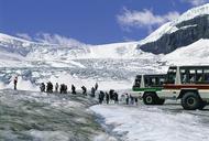 大人気コース!レイクルイーズとコロンビア大氷原1日観光