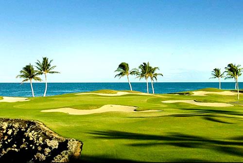 ゴルフ(ハワイ島・ハワイ) [トラベルドンキー] オプショナル ...