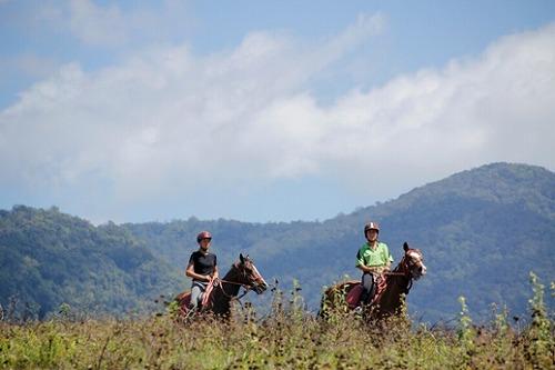 マウントンライド 半日プライベート乗馬ツアー
