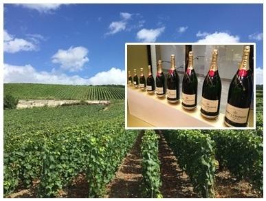 [みゅう]シャンパン農家で昼食! 世界遺産ランスと老舗シャンパンセラー 1日観光