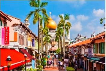 【シンガポール】1日市内観光デラックス&どきどきナイトサファリ 日本語音声トラム確約&優先乗車+サファリウォーク付き