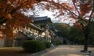 慶州ツアー(1泊2日)