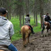 イブニング乗馬とカウボーイディナー