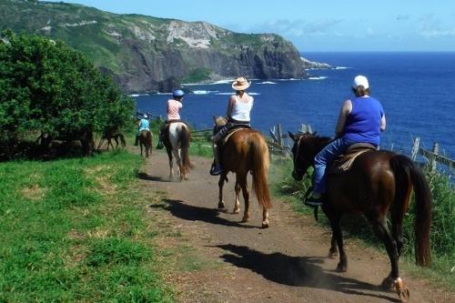 【マウイ島で乗馬♪】メンデス牧場 (午前・午後)