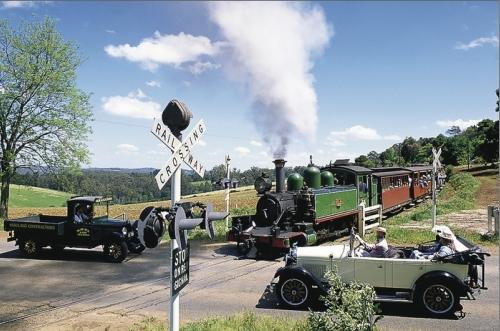 森林浴!蒸気機関車とダンデノン丘陵 (半日)