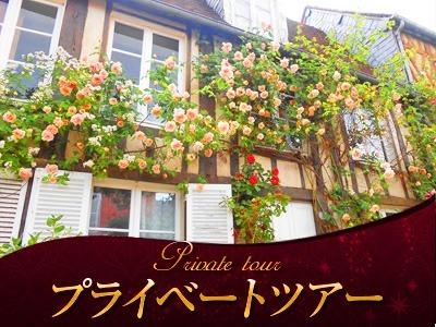 [みゅう]【プライベートツアー】専用車で行く 薔薇の村ジェルブロワ観光