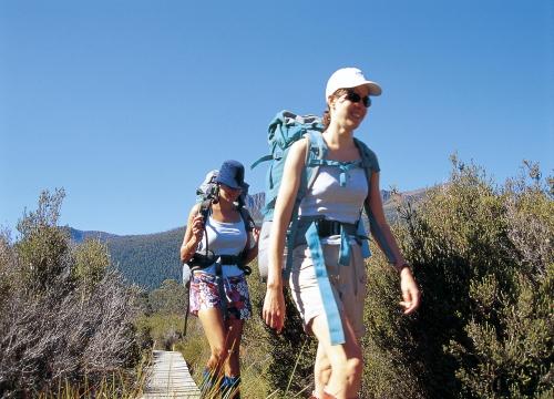 世界遺産クレイドルマウンテン国立公園日帰りハイキングツアー