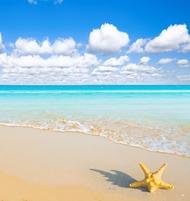 ウィットサンデー諸島&ホワイトヘブンビーチ 半日クルーズ