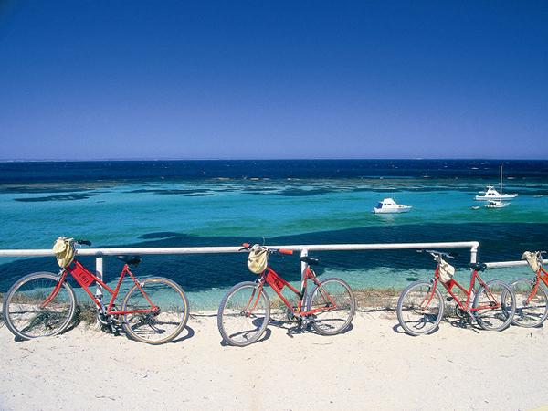 サイクリングコースもあります