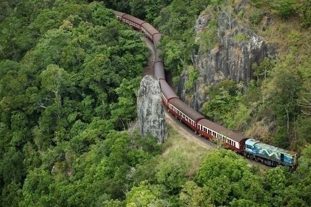 熱帯雨林を縫って列車は走ります