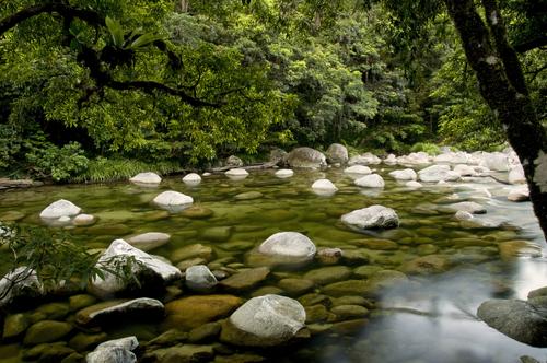 渓谷のせせらぎは水が透き通ってます!!