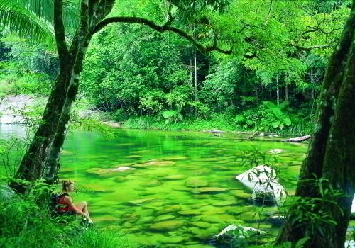 手付かずの自然が残るモスマン渓谷